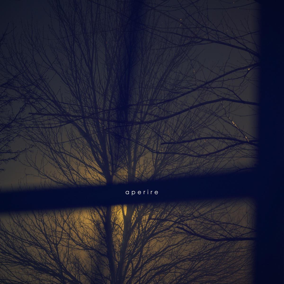 remaining - aperire - 网易云音乐