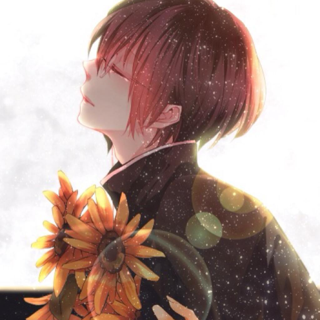 美哭的日文歌