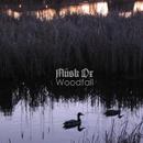 Woodfall专辑封面