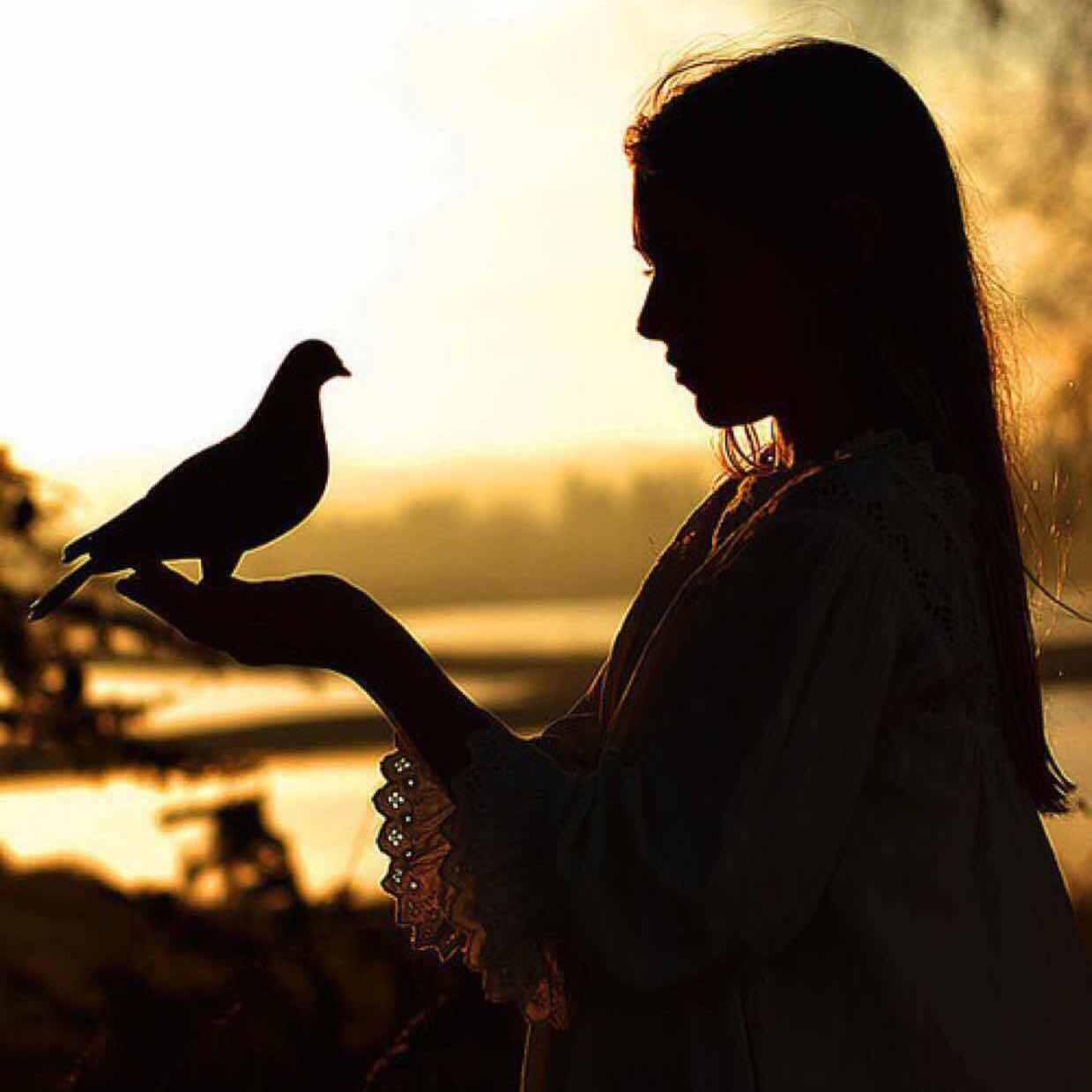 Тень девушки и птицы фото