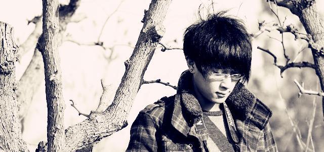 歌手郑毅_郑毅的歌曲